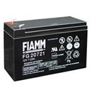 FIAMM FG Batteries
