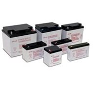 EnerSys DataSafe NPX-50-6 Batteries